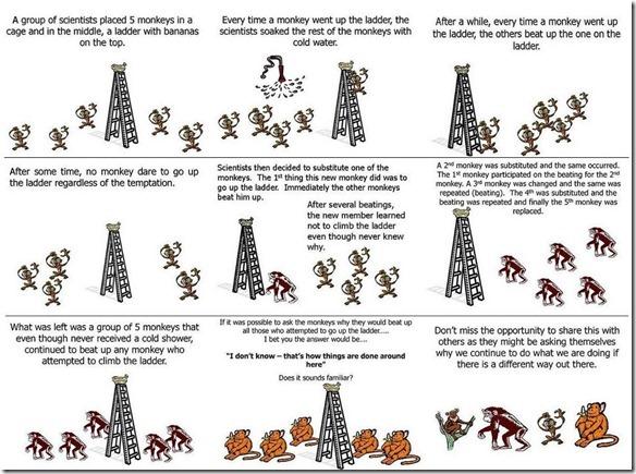monkeydigm