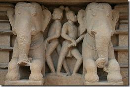 elephant sex