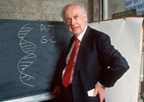 To bid or not to bid: James Watson and the Noble Auction