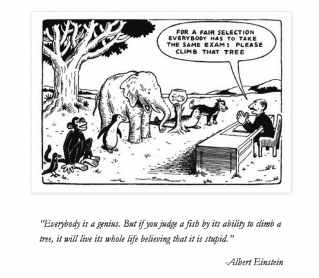 einstein-exam-cartoon