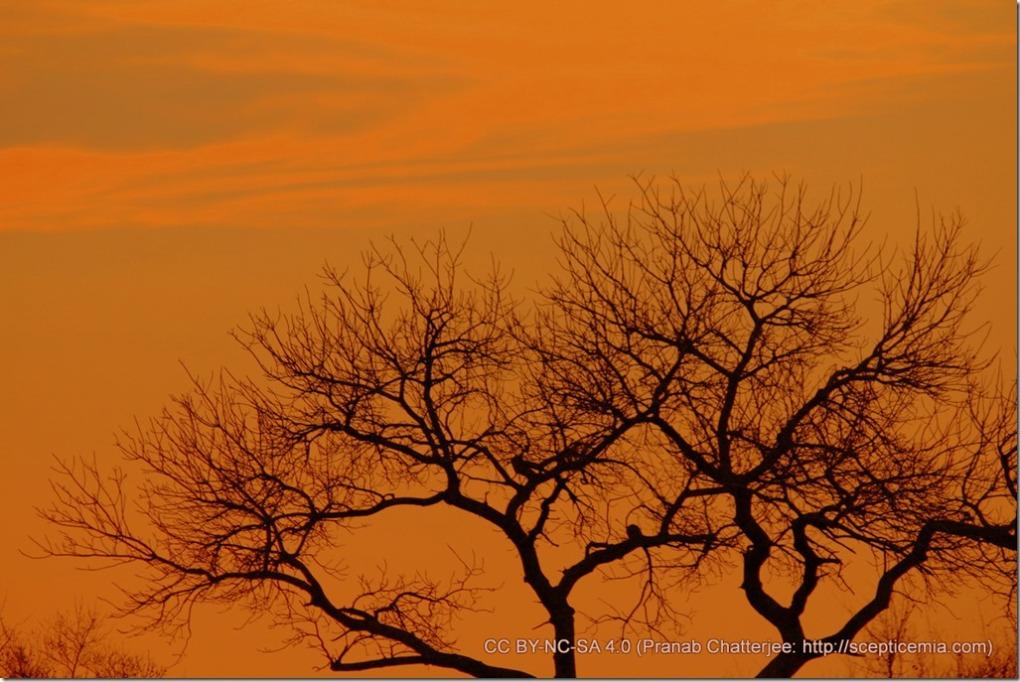 23 'Neath the setting sun