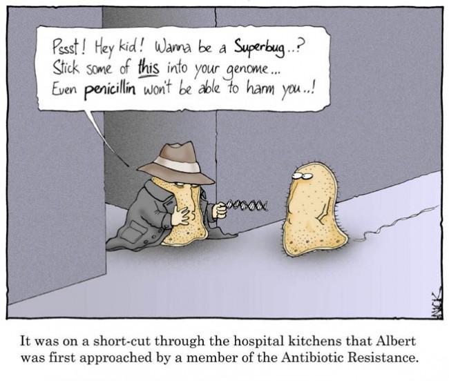 antibiotic-resistance-comic-650x552