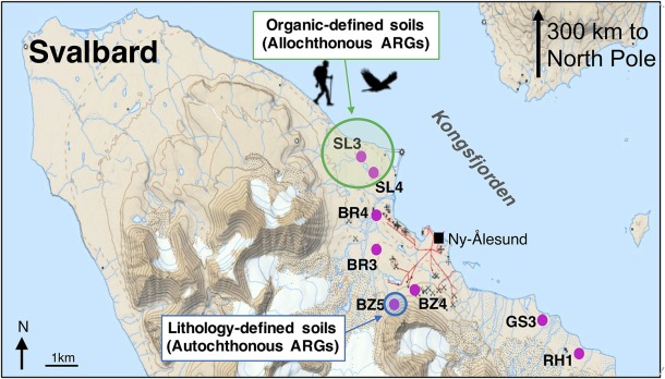 Sampling locations of the eight soil clusters in Kongsfjorden. Topographic map has been adapted from the Norwegian Polar Institute.